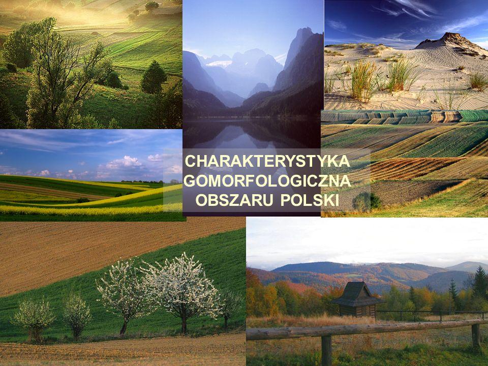 J.Kwiatkowska-Malina18 Rędziny właściwe ACca Cca Użytkowane rolniczo lub porośnięte roślinnością leśną.