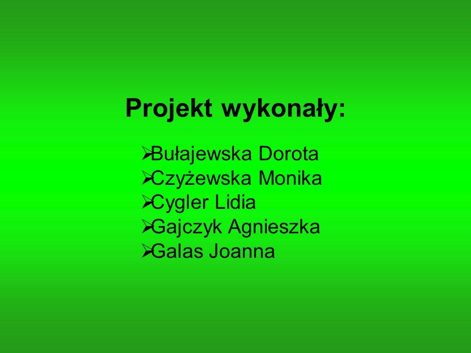 Projekt wykonały: Bułajewska Dorota Czyżewska Monika Cygler Lidia Gajczyk Agnieszka Galas Joanna
