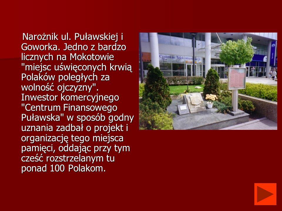 Narożnik ul. Puławskiej i Goworka. Jedno z bardzo licznych na Mokotowie