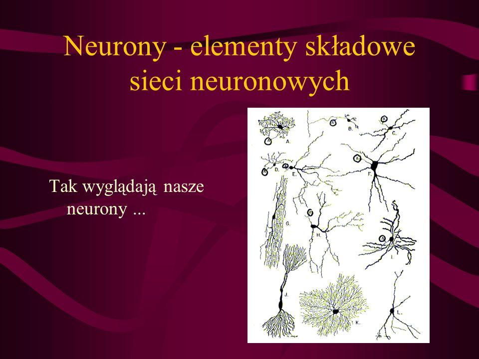 Neurony - elementy składowe sieci neuronowych Tak wyglądają nasze neurony...