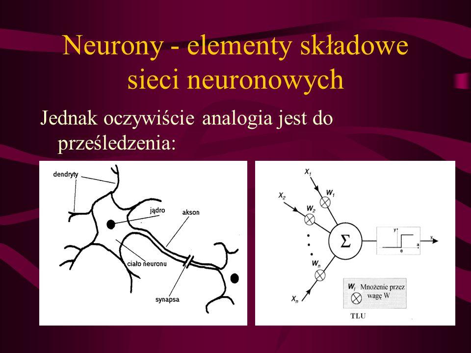 Neurony - elementy składowe sieci neuronowych Jednak oczywiście analogia jest do prześledzenia: