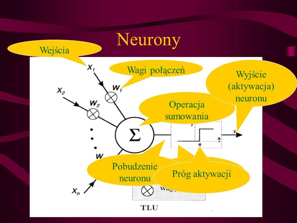 Neurony Wejścia Wagi połączeń Operacja sumowania Funkcja aktywcyjna Pobudzenie neuronu Próg aktywacji Wyjście (aktywacja) neuronu
