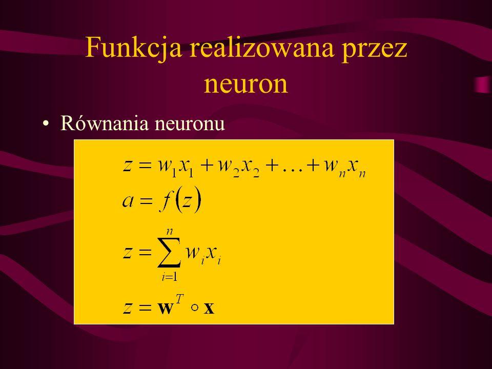 Funkcja realizowana przez neuron Równania neuronu