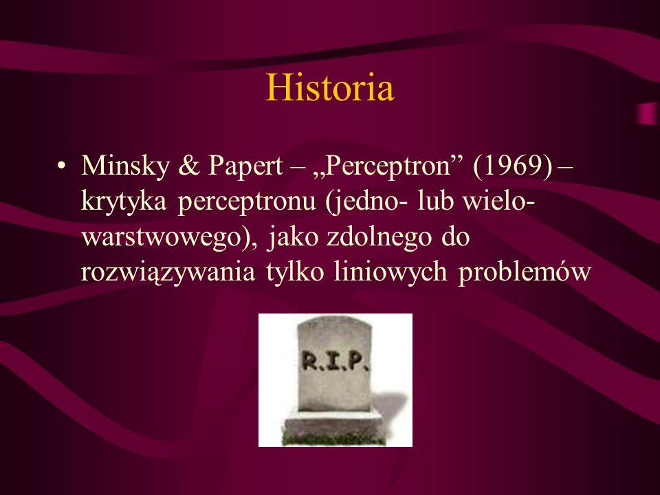 Historia Minsky & Papert – Perceptron (1969) – krytyka perceptronu (jedno- lub wielo- warstwowego), jako zdolnego do rozwiązywania tylko liniowych pro
