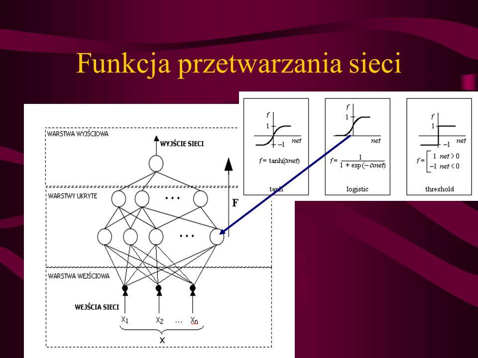 Funkcja przetwarzania sieci