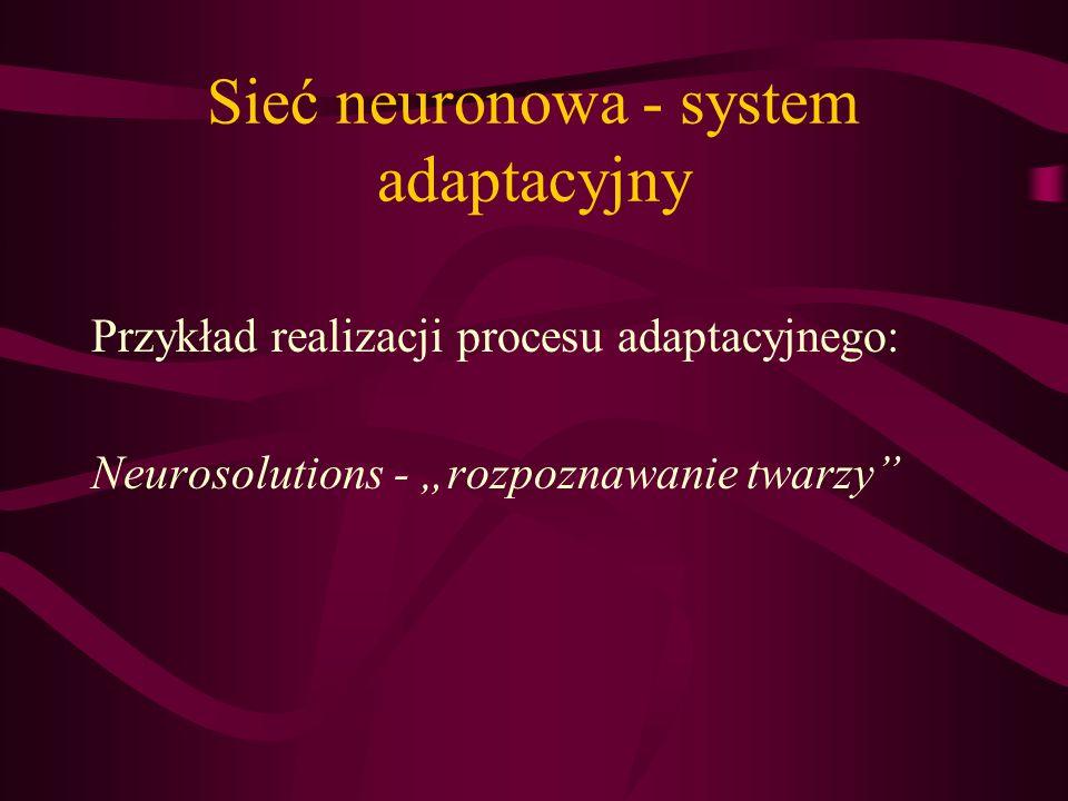 Sieć neuronowa - system adaptacyjny Przykład realizacji procesu adaptacyjnego: Neurosolutions - rozpoznawanie twarzy