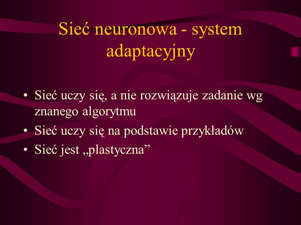 Sieć neuronowa - system adaptacyjny Sieć uczy się, a nie rozwiązuje zadanie wg znanego algorytmu Sieć uczy się na podstawie przykładów Sieć jest plast
