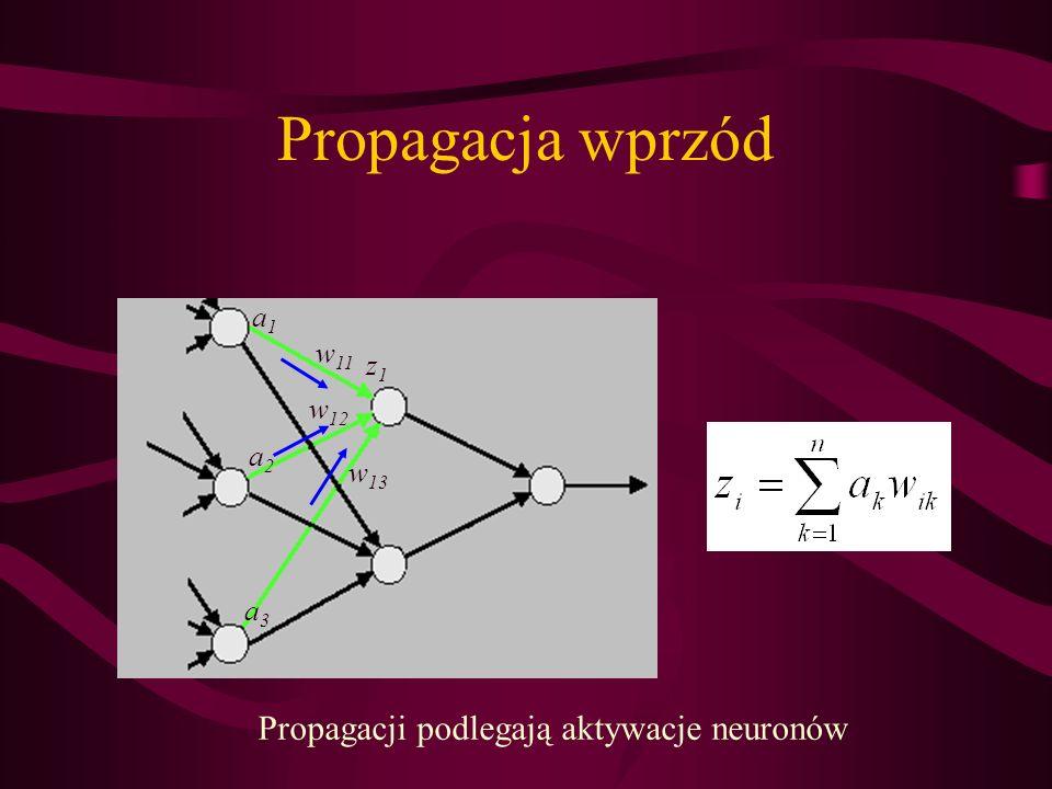 Propagacja wprzód z1z1 a1a1 a2a2 a3a3 w 11 w 12 w 13 Propagacji podlegają aktywacje neuronów