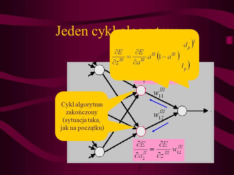Jeden cykl algorytmu Cykl algorytmu zakończony (sytuacja taka, jak na początku)