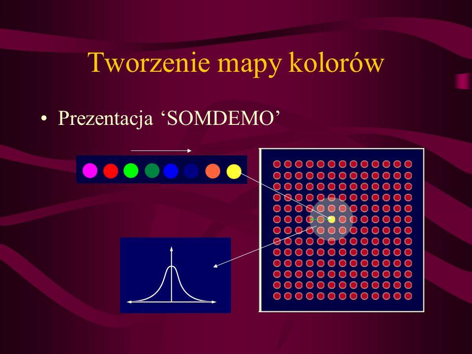 Tworzenie mapy kolorów Prezentacja SOMDEMO