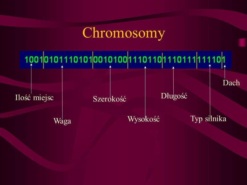 Chromosomy Ilość miejsc Szerokość Wysokość Długość Typ silnika Dach Waga