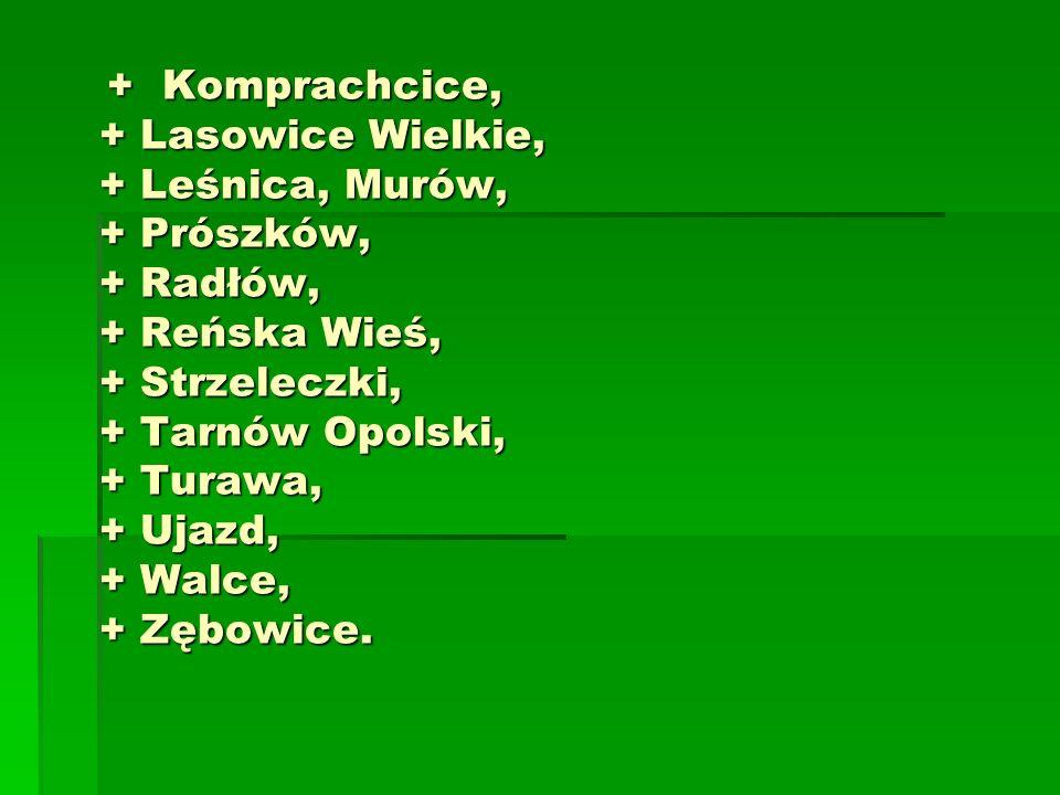 + Komprachcice, + Lasowice Wielkie, + Leśnica, Murów, + Prószków, + Radłów, + Reńska Wieś, + Strzeleczki, + Tarnów Opolski, + Turawa, + Ujazd, + Walce, + Zębowice.