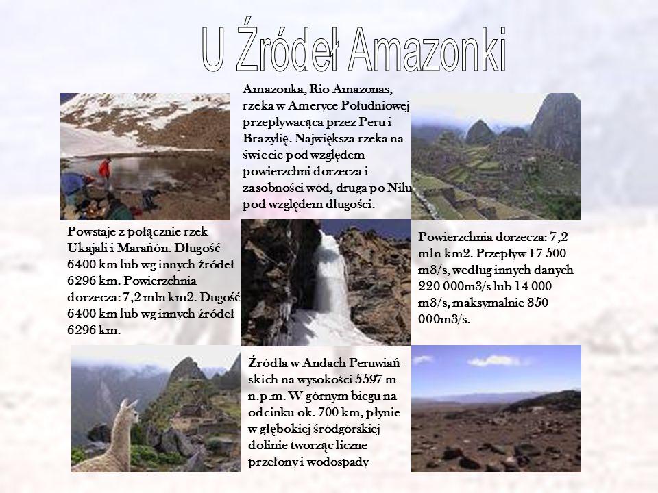 Ź ród ł a w Andach Peruwia ń - skich na wysoko ś ci 5597 m n.p.m. W górnym biegu na odcinku ok. 700 km, p ł ynie w g łę bokiej ś ródgórskiej dolinie t