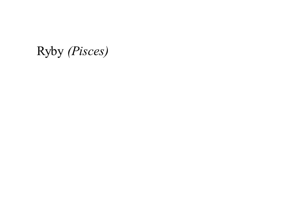 Ryby (Pisces)