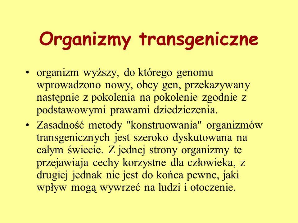 Organizmy transgeniczne organizm wyższy, do którego genomu wprowadzono nowy, obcy gen, przekazywany następnie z pokolenia na pokolenie zgodnie z podst