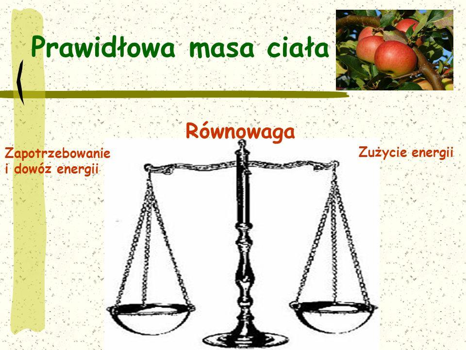 Prawidłowa masa ciała Zapotrzebowanie i dowóz energii Zużycie energii Równowaga