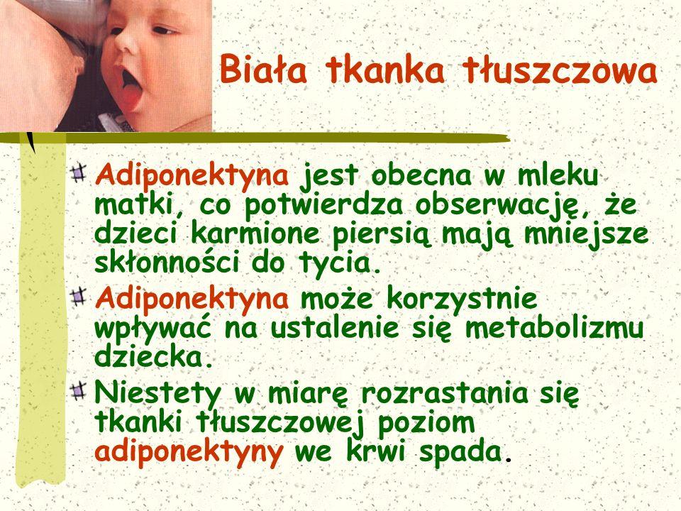 Biała tkanka tłuszczowa Adiponektyna jest obecna w mleku matki, co potwierdza obserwację, że dzieci karmione piersią mają mniejsze skłonności do tycia.