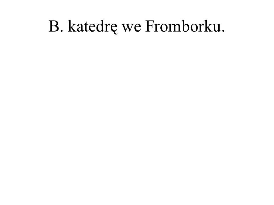B. katedrę we Fromborku.