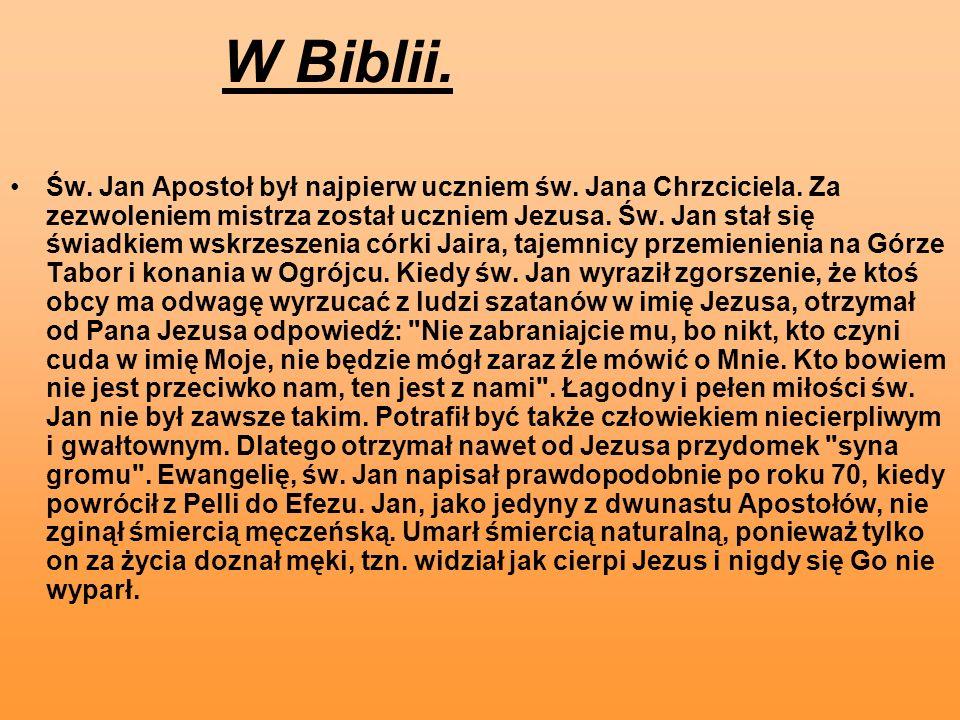 W Biblii. Św. Jan Apostoł był najpierw uczniem św. Jana Chrzciciela. Za zezwoleniem mistrza został uczniem Jezusa. Św. Jan stał się świadkiem wskrzesz