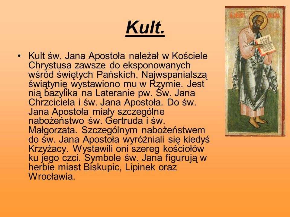 Kult. Kult św. Jana Apostoła należał w Kościele Chrystusa zawsze do eksponowanych wśród świętych Pańskich. Najwspanialszą świątynię wystawiono mu w Rz