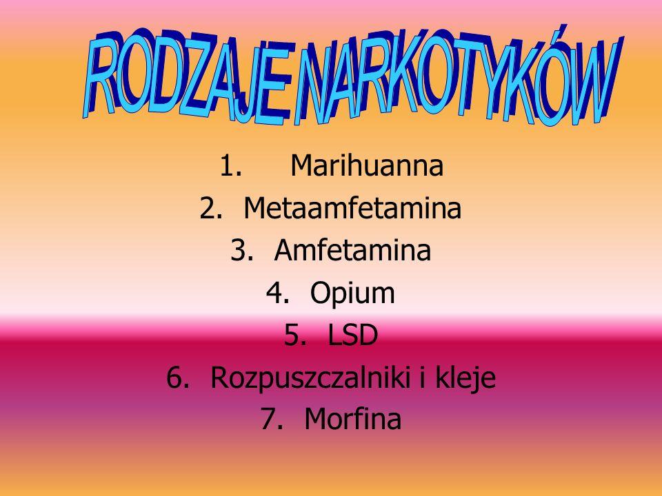 1. Marihuanna 2.Metaamfetamina 3.Amfetamina 4.Opium 5.LSD 6.Rozpuszczalniki i kleje 7.Morfina