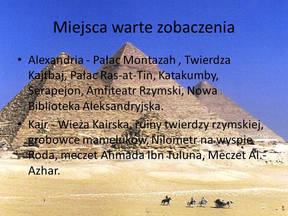 Miejsca warte zobaczenia Alexandria - Pałac Montazah, Twierdza Kajtbaj, Pałac Ras-at-Tin, Katakumby, Serapejon, Amfiteatr Rzymski, Nowa Biblioteka Ale