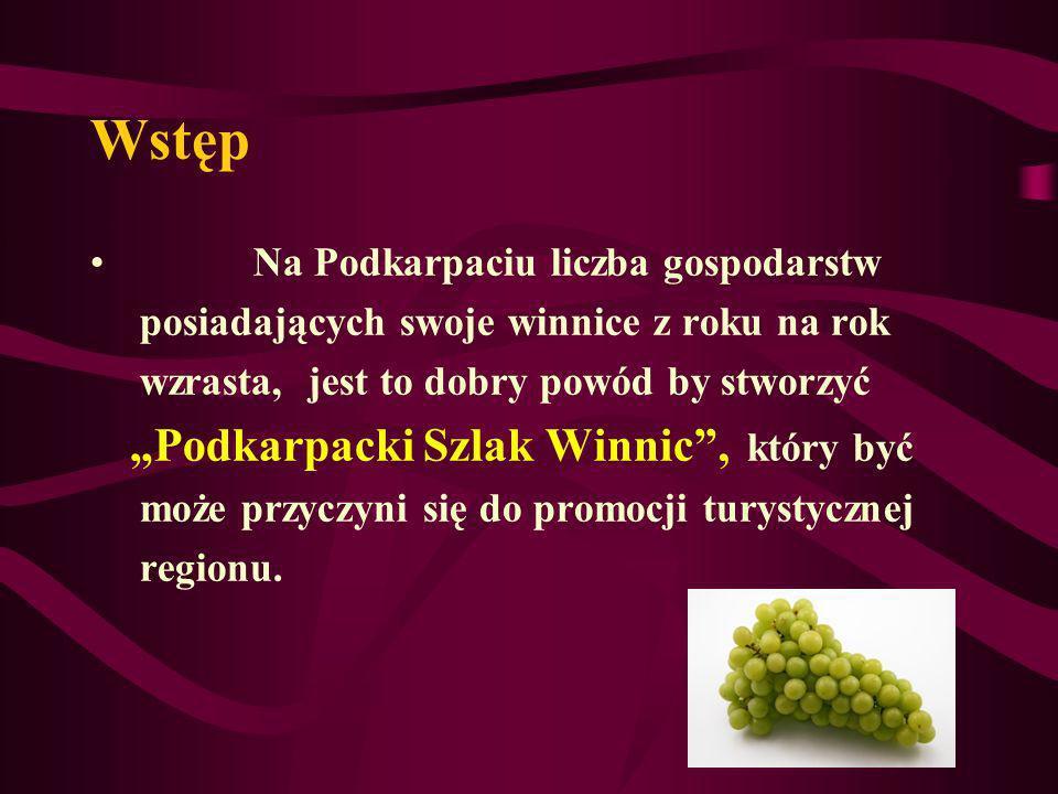 Wstęp Warunki dla rozwoju polskiego winiarstwa, a tym samym dla enoturystyki, od bardzo dawna nie były tak korzystne, jak obecnie.