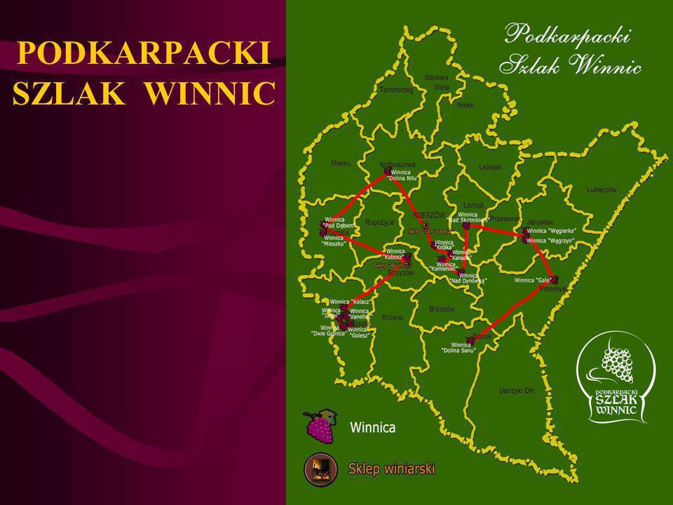 LOGO Podkarpackiego Szlaku Winnic
