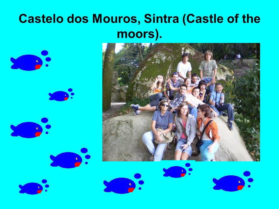 Castelo dos Mouros, Sintra (Castle of the moors).