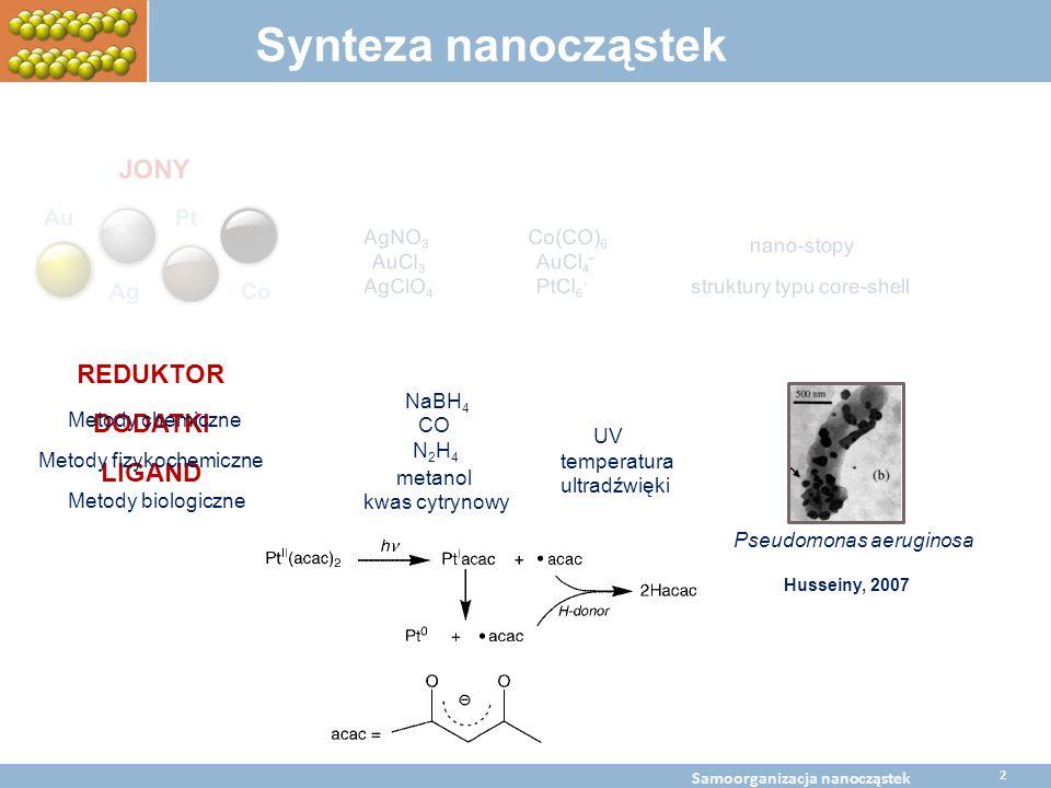 DODATKI LIGAND Metody chemiczne Metody fizykochemiczne Metody biologiczne BaltChem Conference April 5, 2009 Metal nanoparticles self assembly Synteza