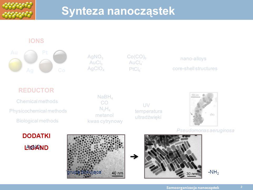 LIGAND AgNO 3 BaltChem Conference April 5, 2009 Metal nanoparticles self assembly Synteza nanocząstek IONS REDUCTOR DODATKI Au Ag Pt Co -NH 2 -SH-OH-C