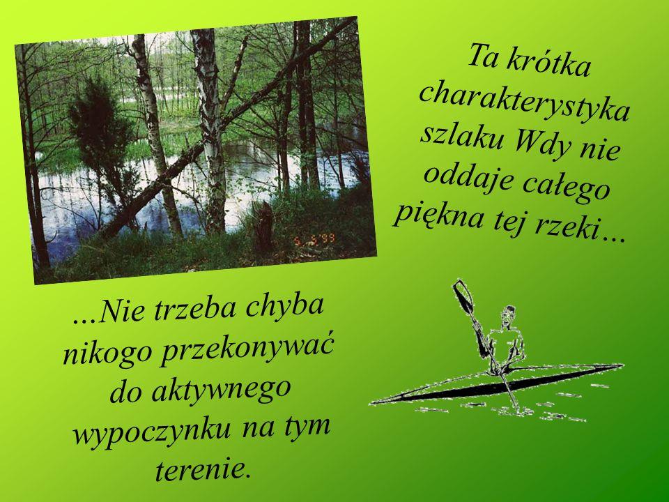 …Nie trzeba chyba nikogo przekonywać do aktywnego wypoczynku na tym terenie. Ta krótka charakterystyka szlaku Wdy nie oddaje całego piękna tej rzeki…