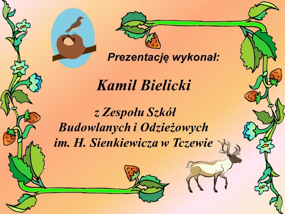 Kamil Bielicki Prezentację wykonał: z Zespołu Szkół Budowlanych i Odzieżowych im. H. Sienkiewicza w Tczewie