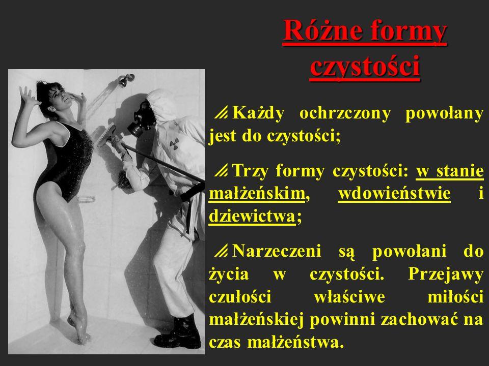 Wykroczenia przeciw czystości Rozwiązłość Masturbacja Nierząd Pornografia Prostytucja Gwałt