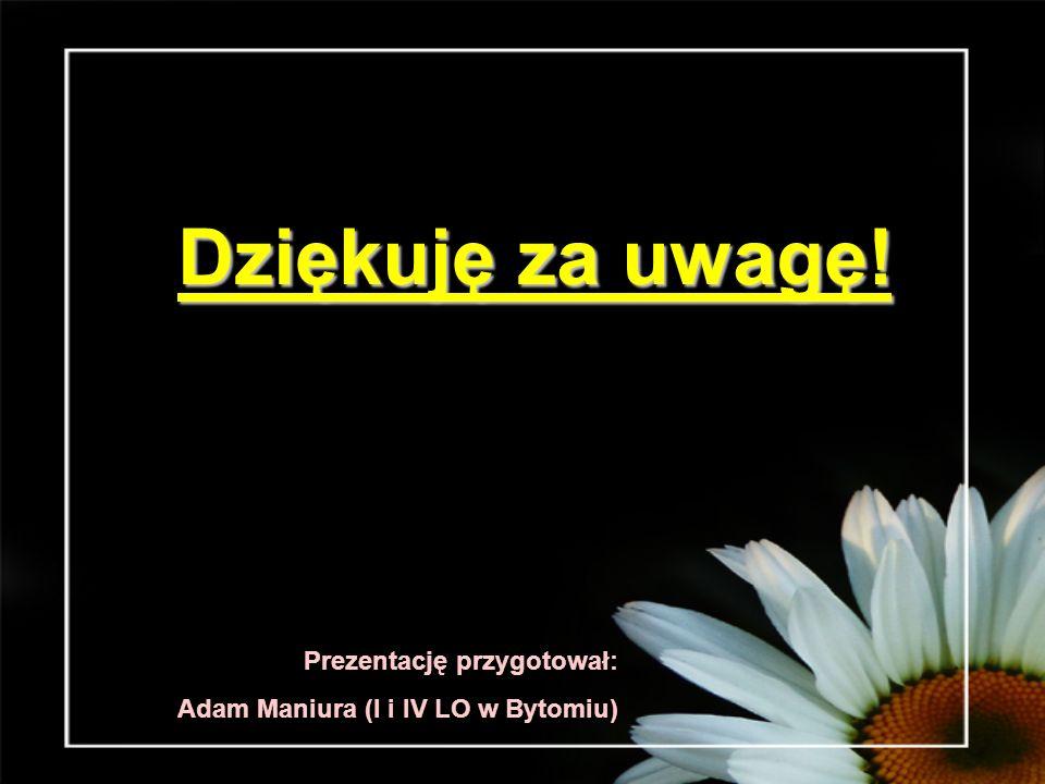 Dziękuję za uwagę! Prezentację przygotował: Adam Maniura (I i IV LO w Bytomiu)