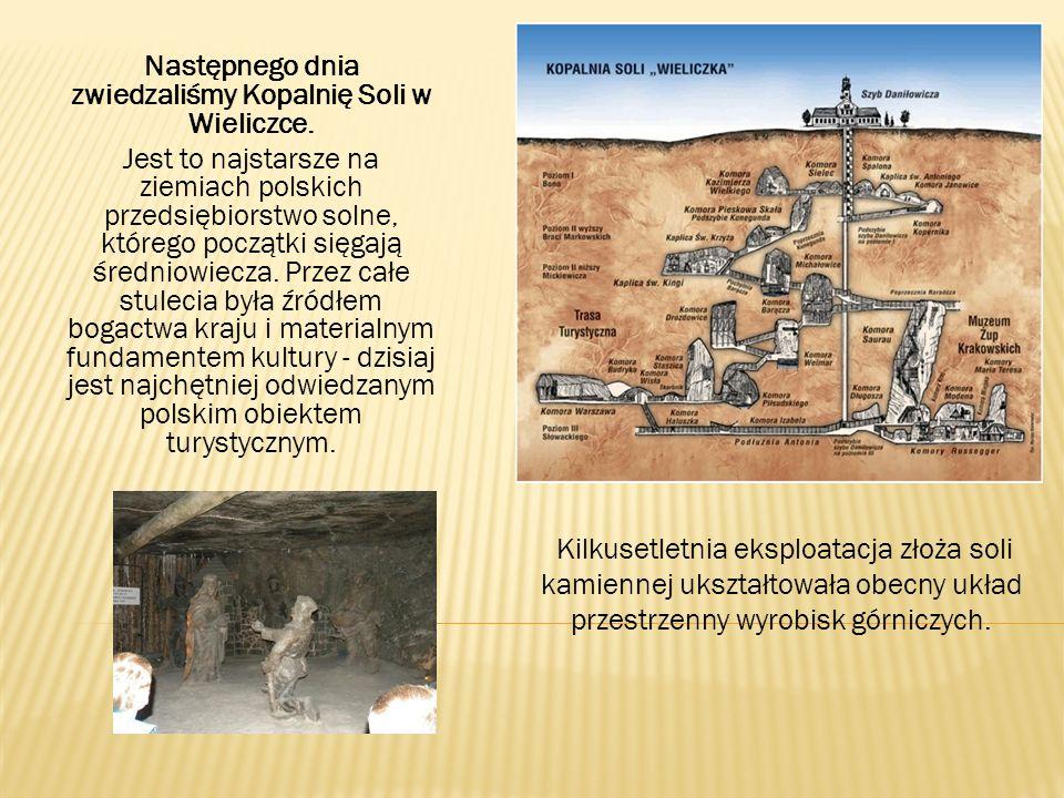 Następnego dnia zwiedzaliśmy Kopalnię Soli w Wieliczce. Jest to najstarsze na ziemiach polskich przedsiębiorstwo solne, którego początki sięgają średn