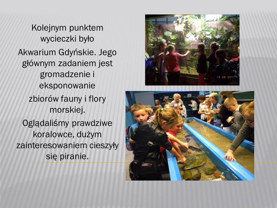 Kolejnym punktem wycieczki było Akwarium Gdyńskie.