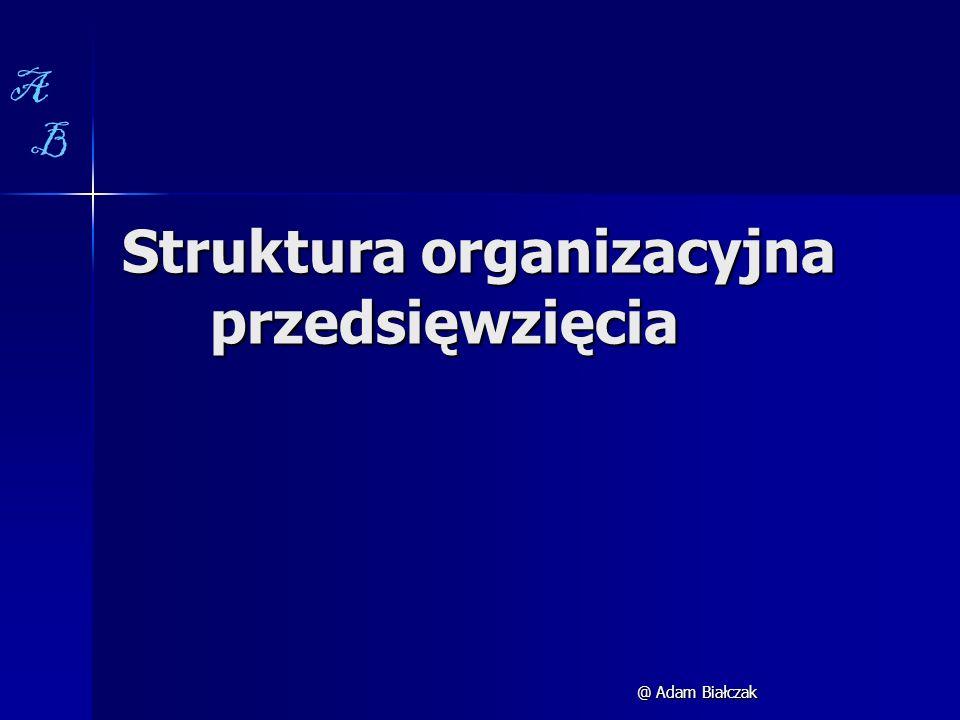 Struktura organizacyjna przedsięwzięcia @ Adam Białczak A B