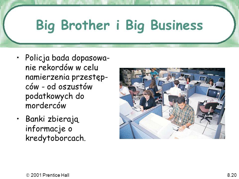 2001 Prentice Hall8.20 Big Brother i Big Business Policja bada dopasowa- nie rekordów w celu namierzenia przestęp- ców - od oszustów podatkowych do morderców Banki zbierają informacje o kredytoborcach.