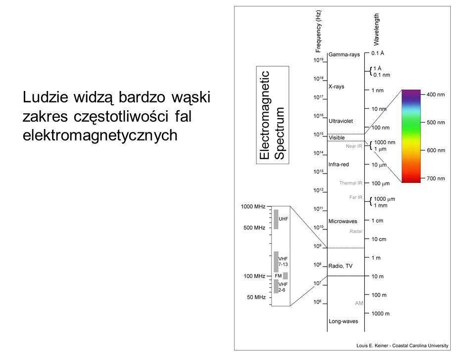 Ludzie widzą bardzo wąski zakres częstotliwości fal elektromagnetycznych