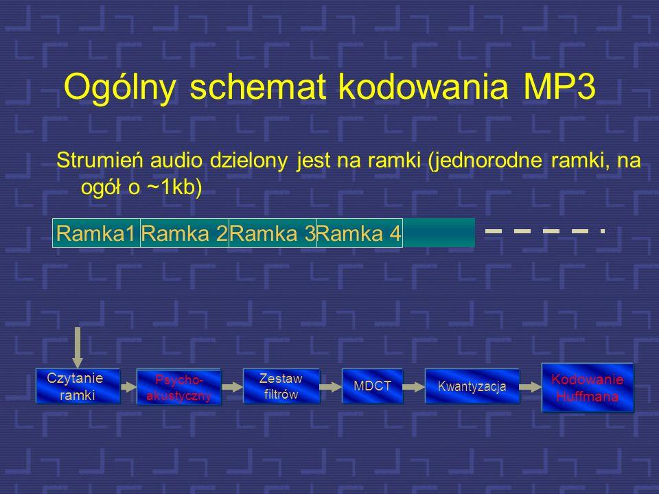 MPEG1 warstwa 3 (MP3) 59