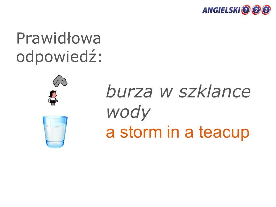 Prawidłowa odpowiedź: burza w szklance wody a storm in a teacup