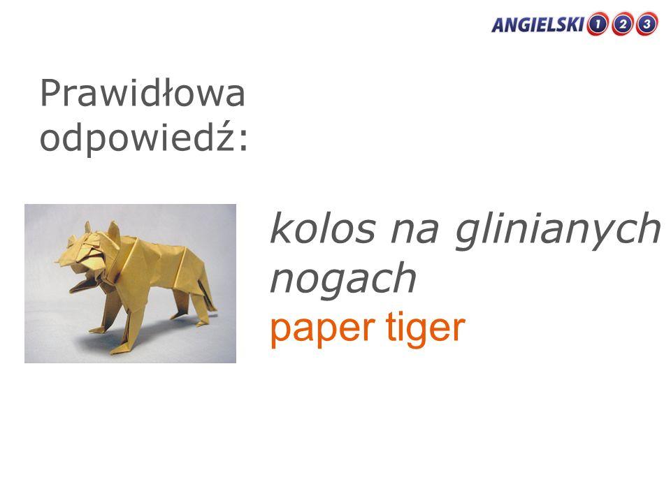 Prawidłowa odpowiedź: kolos na glinianych nogach paper tiger