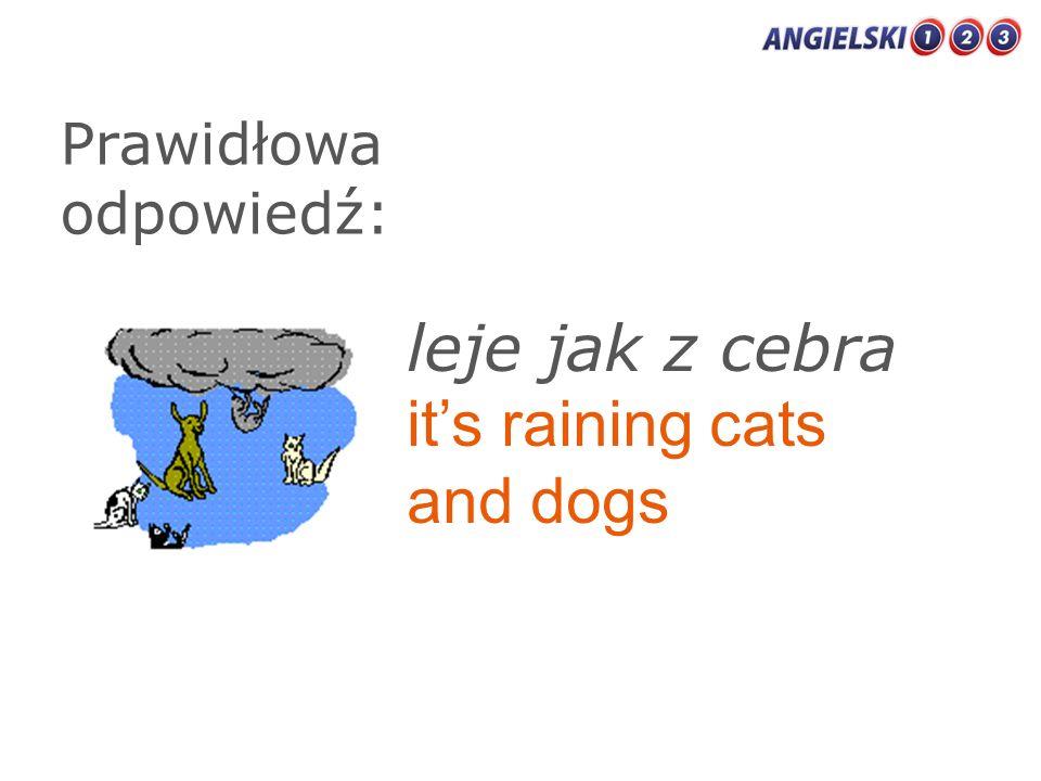 Prawidłowa odpowiedź: leje jak z cebra its raining cats and dogs