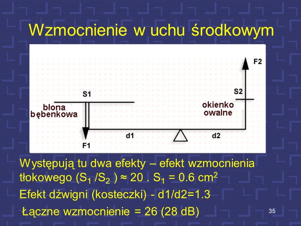 Praca układu kosteczek ucha środkowego 34