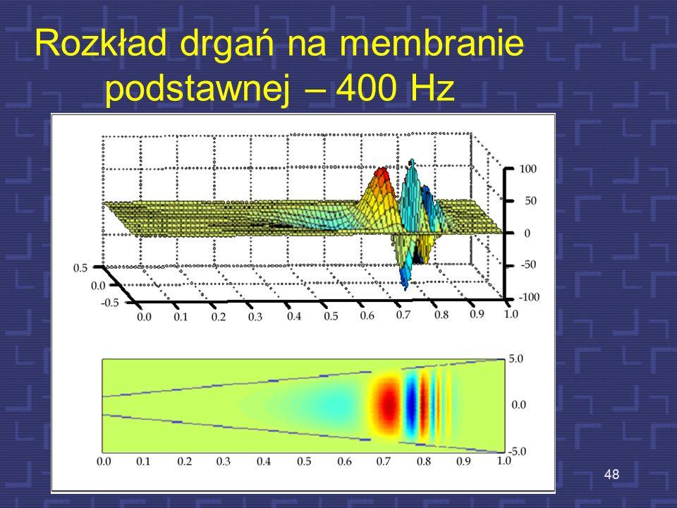 Rozkład drgań na membranie podstawnej – 100 Hz 47
