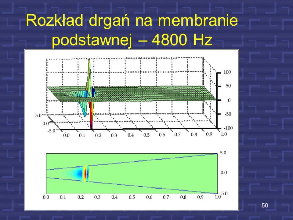 Rozkład drgań na membranie podstawnej – 1200 Hz 49