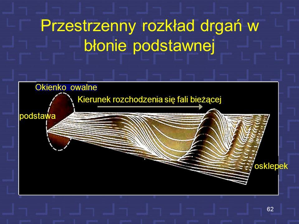 Uszkodzona komórka rzęskowa zewnętrzna zewnętrzne wewnętrzne Uszkodzona komórka rz. 61