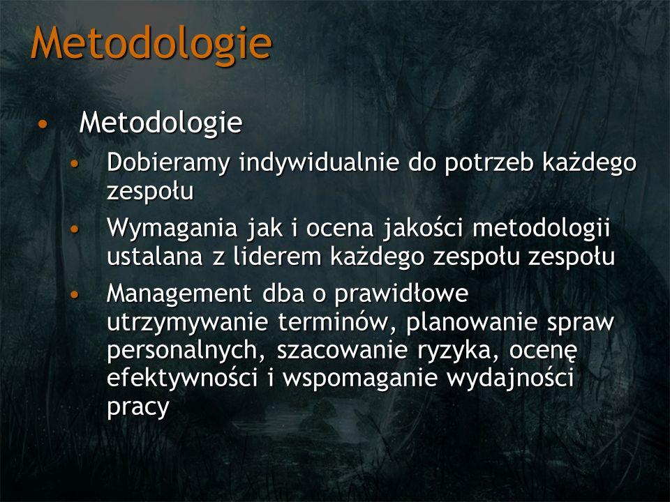 Metodologie MetodologieMetodologie Dobieramy indywidualnie do potrzeb każdego zespołuDobieramy indywidualnie do potrzeb każdego zespołu Wymagania jak