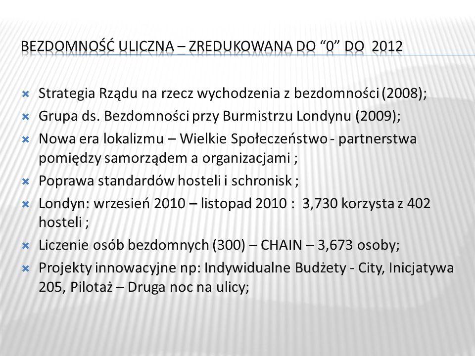 Strategia Rządu na rzecz wychodzenia z bezdomności (2008); Grupa ds.